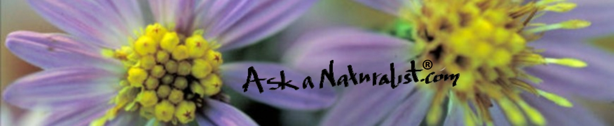 Ask a Naturalist®